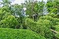 19 Остепненные склоны и балочные леса по правому берегу долины р. Осетрик.jpg