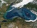 2002 satellite picture of the Black Sea.jpg