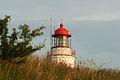 20050708-IMG 1406-Leuchtturm-Dornbusch.jpg