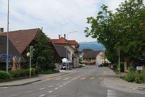 2012-05-26-Seeland (Foto Dietrich Michael Weidmann) 245.JPG