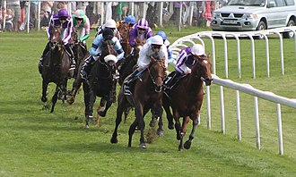 2012 Epsom Derby - 2012 Derby field rounding Tattenham Corner. Camelot is at far left.