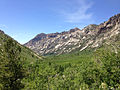 2014-06-23 14 27 47 View down Lamoille Canyon from the upper reaches of Lamoille Canyon Road.JPG