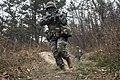 2014.11.18. 해병대사령부 - 상륙훈련(18th, Nov, 2014 ROKMC HQ - Amphibious Operation Training) (15725092270).jpg