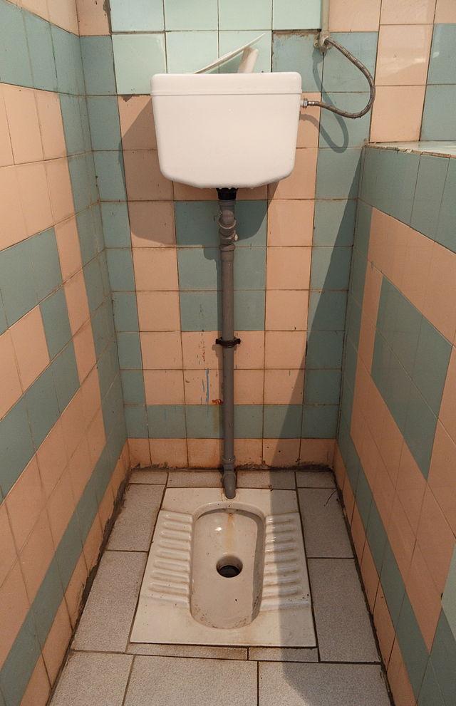 Brilliant Squat Toilet Wikiwand Machost Co Dining Chair Design Ideas Machostcouk