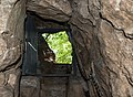 2016 Jaskinia w Radochowie 4.jpg