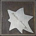 2018-07-18 Sterne der Satire - Walk of Fame des Kabaretts Nr 15 Walter Mehring-1068.jpg