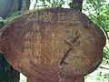 336, Taiwan, 桃園市復興區華陵里 - panoramio (67).jpg