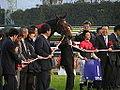 39th Queen Elizabeth II Cup - Kyoto Racecourse (15878399286).jpg