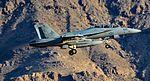 533-168768 Boeing EA-18G Growler VAQ 134 (32853259585).jpg