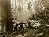 75mm gun firing on Bougainville March 1944.jpg