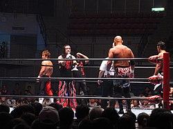 Professional wrestling - Wikipedia
