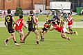 ANZAC Day Commemorative Games Wagga Tigers v Collingullie GP Demons at Robertson Oval (5).jpg