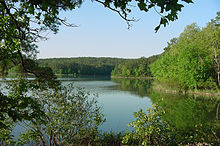 AR Ouachita National Forest.jpg