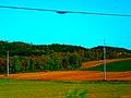 ATC Power Line - panoramio (37).jpg