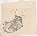 A Cat Resting on All Fours, Seen from Behind MET DP807592.jpg