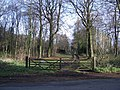 A Former Carriage Drive, Ashburnham Place - geograph.org.uk - 295007.jpg