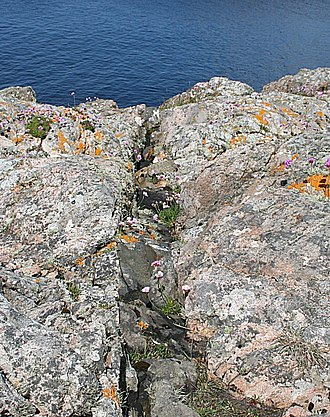 Lewisian complex - Undeformed Scourie dyke cutting Lewisian Gneiss, about 1.6 km west of Scourie