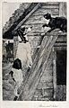 A cat and a dog facing each other on top of a ladder. Etchin Wellcome V0021893.jpg