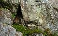 A crack in the granite at Govik 2.jpg