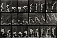A man lifting a trunk. Photogravure after Eadweard Muybridge Wellcome V0048693.jpg