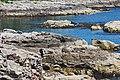 Acadia 2012 08 22 0392 (7958507834).jpg