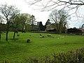 Across to Crambe - geograph.org.uk - 790620.jpg