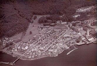 Port Alice - Aerial view of the original townsite