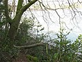 Afon Menai from Treborth Woods - geograph.org.uk - 387353.jpg