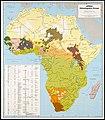 Africa Languages.jpg