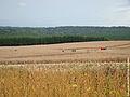 Agriculta x ESEC Mata Preta.jpg