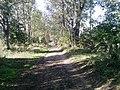 Aleja Rajczywiecka - panoramio.jpg