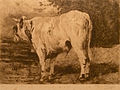 Alfred Verwee 044.JPG
