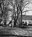 Alleen - Agersø 1953 (fotograf ukendt) - panoramio.jpg