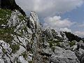 Am verlängerten Bismarcksteig Richtung Seehütte.jpg