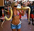 "American Snake Charmer ""Ashley G"" by D Ramey Logan.jpg"