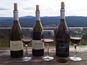 From the Esterlina Tasting Room in Mendocino C...