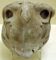 AncientEgyptian-PlasterHeadOfFalcon-ROM.png