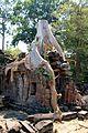 Angkor Wat - panoramio (56).jpg