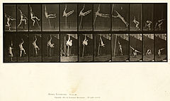 Animal locomotion. Plate 164 (Boston Public Library).jpg