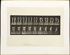 Animal locomotion. Plate 339 (Boston Public Library).jpg