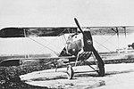 Ansaldo A.1 Balilla, scheda Aerei da Guerra.jpg