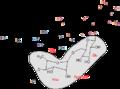 Anthocyanidin-3-hydroxycinnamoyl-rutinoside-5-glucoside.png