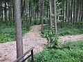 Anykščių sen., Lithuania - panoramio - VietovesLt (3).jpg