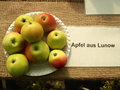 Apfel aus Lunow.png