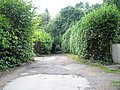 Approach road to the car park by The Beacon - geograph.org.uk - 932433.jpg