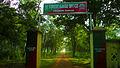 Arabari Model community forest.jpg