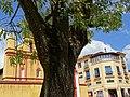 Architectural Detail - San Cristobal de las Casas - Chiapas - Mexico (15024613634).jpg