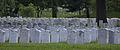 Arlington National Cemetery Rows.jpg