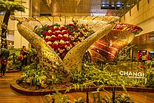 Arrival at Changi Airport-1 (16181523131).jpg