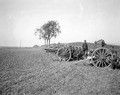 Artillerie in Feuerstellung bei Zihlwil - CH-BAR - 3236407.tif